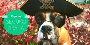 O seguro mais barato pode ser seguro pirata