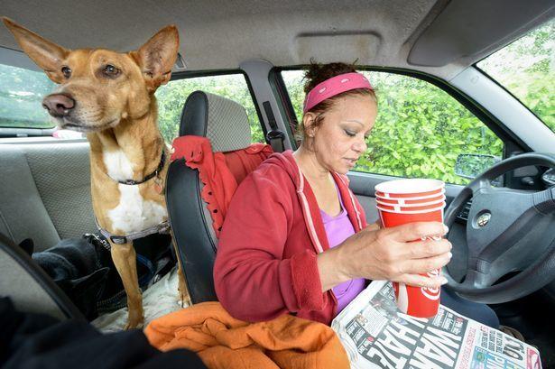 Hillary Barrows e seus cães vivendo dentro de um carro