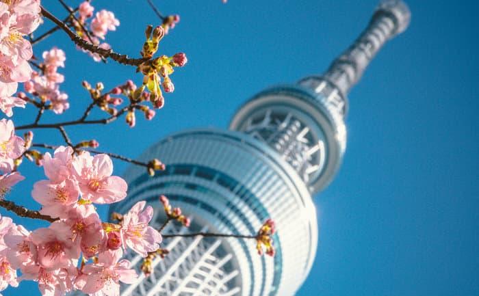 Tokyo Sky Tree é a mais famosa torre da cidade