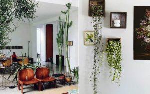 imagem de jardim dentro de casa