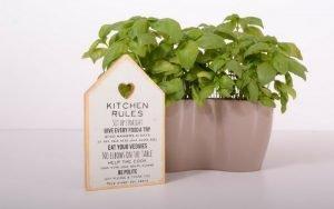 imagem de horta para ilustrar post sobre decorar cozinha pequena pouco dinheiro